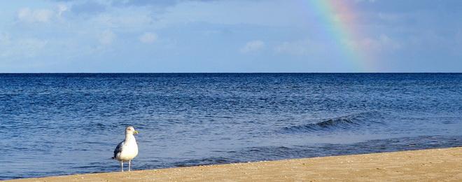 Regenbogen_Meer